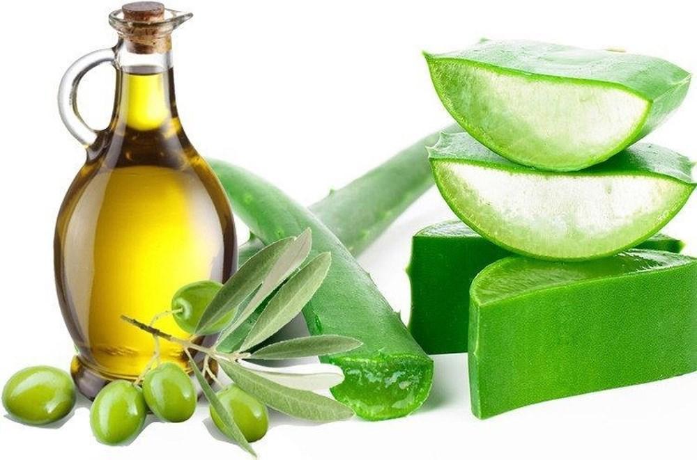 Làm lành vết thương và ngăn ngừa lão hóa cho môi bằng mặt nạ dưỡng môi nha đam & dầu oliu