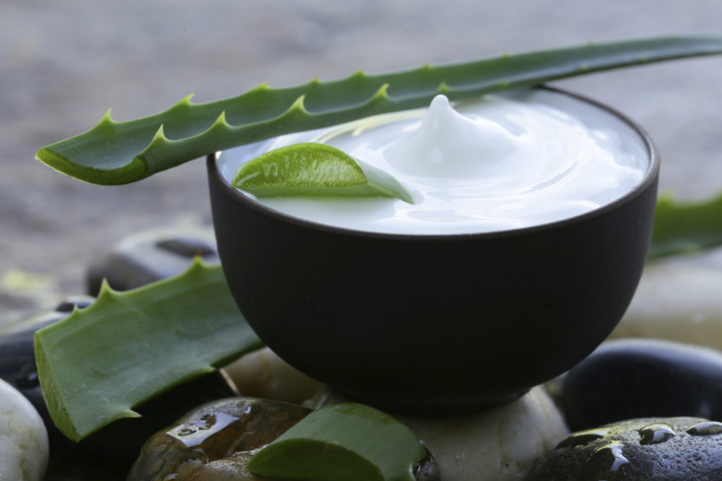 Cách dưỡng môi bằng nha đam và sữa chua giúp môi hồng hào, căng mịn
